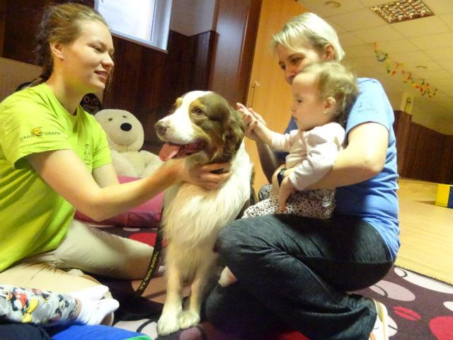 Canisterapie rozzářila dětské tváře
